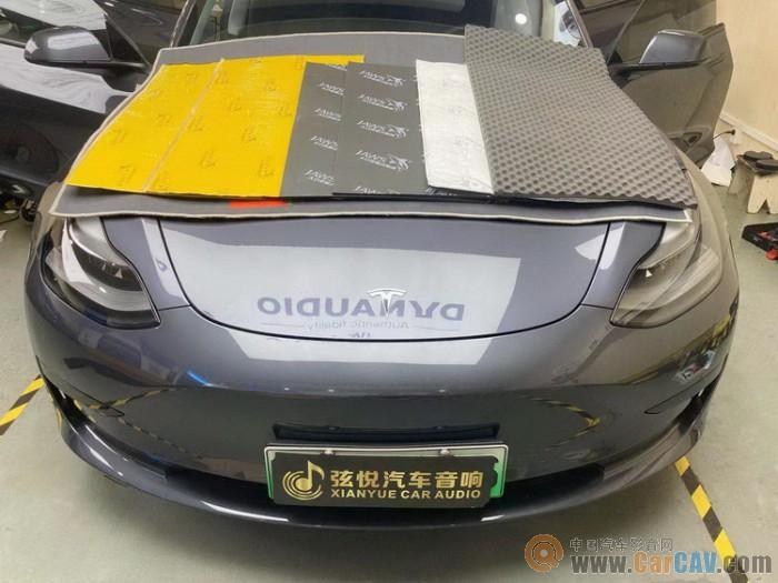 增城弦悦特斯拉model 3汽车隔音改装大白鲨 静享其程